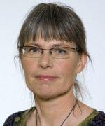 Stina Bergström, MP