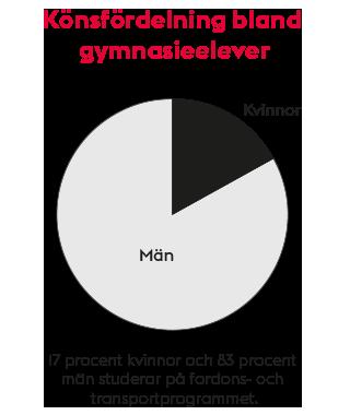 Cirkeldiagram: Könsfördelning bland gymnasieelever på fordons- och transportprogrammet