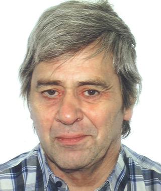 Bengt Holmer